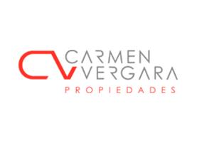 CV Vergara