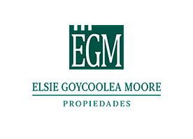 Elsie Goycoolea Propiedades